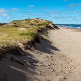 Further east in Brackley beach there are wooden walkways and grassy dunes.